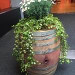 Weinmesse Mittelland Stadttheater Olten Kein Ding 2016 (5)